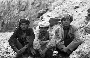 Afghan_DVD24